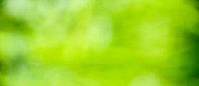Naklejka abstract green background
