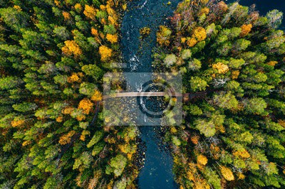 Naklejka Aerial view of fast river flow through the rocks and colorful forest. Autumn in Finland