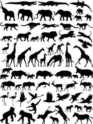 Naklejka African dzikie zwierzęta sylwetka wektor