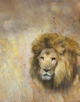 Naklejka African Lion Portret