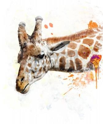 Naklejka Akwarela Cyfrowe Malarstwo Żyrafa