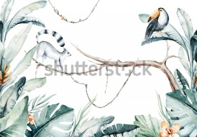 Naklejka Akwarela dżungli ilustracja lemura i tukana na białym tle. Madagaskar fauna zoo egzotyczne lemury zwierzę. Plakat tropikalny projekt.