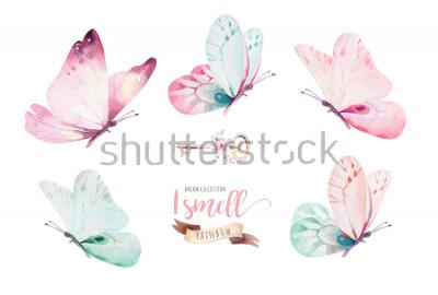Naklejka Akwarela kolorowe motyle, na białym tle. ilustracja niebieski, żółty, różowy i czerwony motyl.