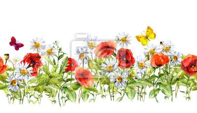 Akwarela kwiaty łąka, trawy, zioła. Jednolite ramy