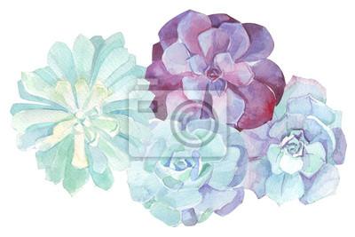 Kwiaty akwarela