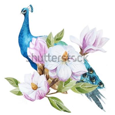 Naklejka akwarela, magnolia, paw, ptak