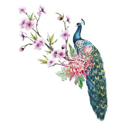 Naklejka Akwarela paw z kwiatów