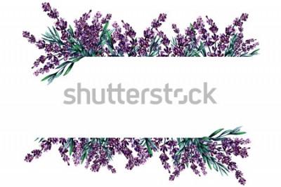 Naklejka Akwarela rama kwiatów lawendy z miejscem na tekst. Pojedynczo na białym tle. Może być używany jako karta zaproszenie na ślub, urodziny i inne wakacje i lato.