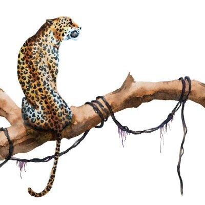 Naklejka Akwarela raster leopard