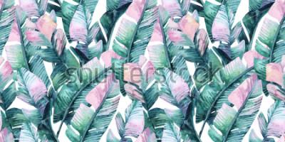 Naklejka Akwarela tropikalny wzór z liści bananowych. Egzotyczne tło liści. Ręcznie malowane naturalną ilustrację na okładkę, tło, druk