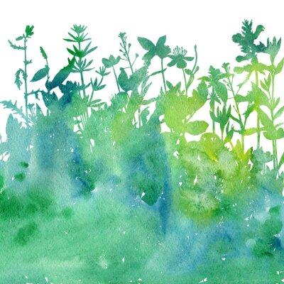 Naklejka Akwareli tło z rysunkowymi ziele i kwiatami