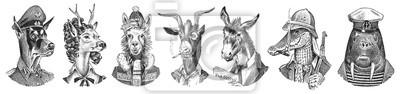 Naklejka Animal characters set. Smoking Goat Llama skier Deer lady Walrus Crocodile Dog Donkey Alpaca. Hand drawn portrait. Engraved monochrome sketch for card, label or tattoo. Hipster Anthropomorphism.