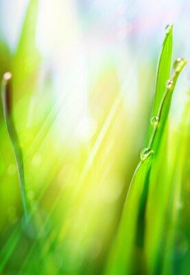 Naklejka art zielone wiosną abstrakcyjne tło światło