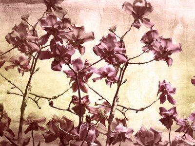 Naklejka Artystycznej z magnolii