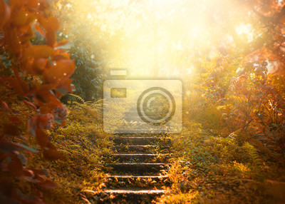 Naklejka Autumn background, stairs to the sky. amazing mysterious road steps leads to mystical world, fairytale path hides among yellow and orange trees, magical October in foggy forest, beauty of nature
