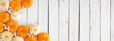 Naklejka Autumn corner border of orange and white pumpkins and berries on a white wood background. Top down view with copy space.