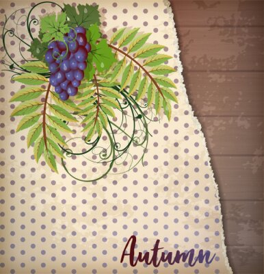 Autumn greeting background with grape leaves, vector illustration