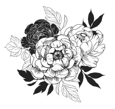Naklejka Background with peony flowers. Floral comtosition. Hand drawn elements converted to vector