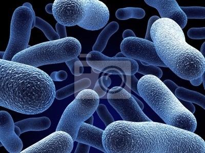 Naklejka bakteria