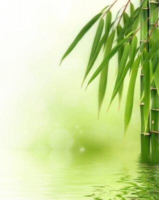 Naklejka Bamboo granicy lub w tle