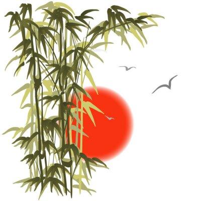 Naklejka Bamboo na tle zachodu słońca