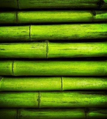 Naklejka Bamboo tle