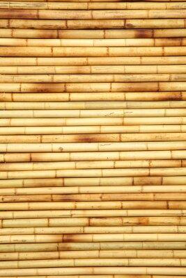 Naklejka bambu fon