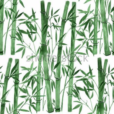 Naklejka Bambus na białym tle Ręcznie rysująca akwareli złożona ilustracja.
