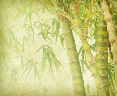 Naklejka bambus na starych grunge tekstury papieru tle