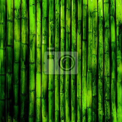 Bambus tekstura
