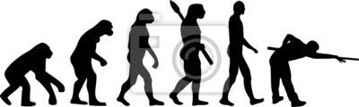 Basen Evolution