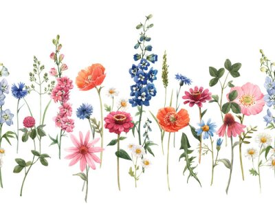 Naklejka Beautiful floral summer seamless pattern with watercolor hand drawn field wild flowers. Stock illustration.
