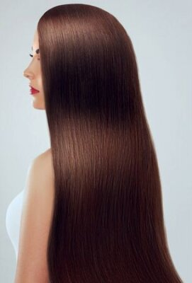 Naklejka Beautiful Hair. Beauty woman with luxurious long hair. Beauty Model Girl with Healthy brown Hair. Pretty female with long smooth shiny straight hair. Hairstyle. Keratin straightening.