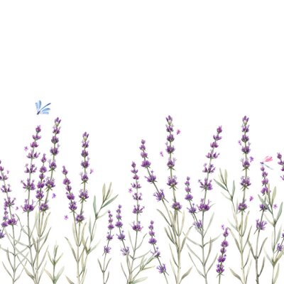 Naklejka Beautiful seamless floral provence pattern with watercolor hand drawn gentle lavander flowers. Stock illustration.