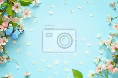 Naklejka Beautiful spring nature background with butterfly, lovely blossom, petal a on turquoise blue background , top view, frame. Springtime concept.