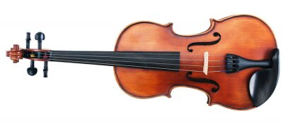 Naklejka Beautiful Violin Isolated on White.