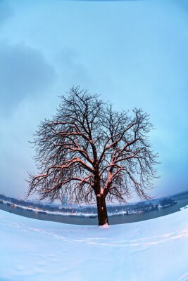 Belgrade fortress and Kalemegdan park with snow