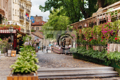 Naklejka Belgrade, Serbia - June 16, 2018. Flowers in pots on historic place Skadarlija with trees, cafes, cobbled lanes and alleys in downtown. Bohemian street with bars and restaurants.