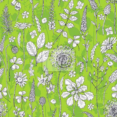 Bez szwu deseń z Polne kwiaty na zielono