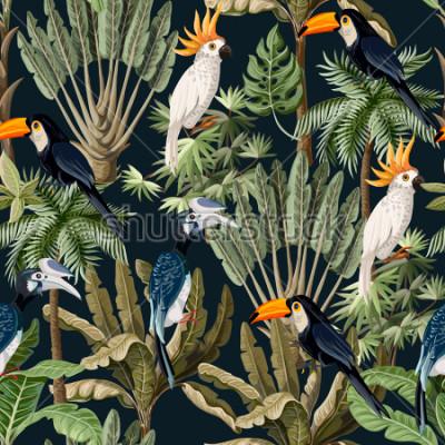 Naklejka Bezszwowy wzór z egzotycznymi drzewami i dzikim ptakiem, papugami i tukanami.