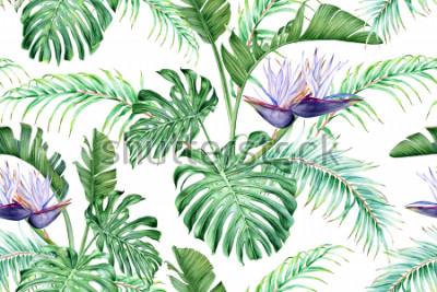 Naklejka Biała Strelitzia i tropikalne liście. Rzadki egzotyczny kwiat. Akwarela bezszwowe wzór.
