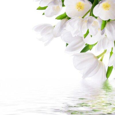 Białe tulipany z zielonej trawy i motyl. Kwiatów w tle.