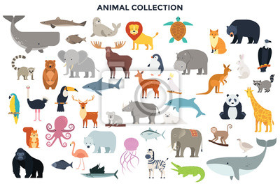 Naklejka Big collection of wild jungle, savannah and forest animals, birds, marine mammals, fish. Set of cute cartoon characters isolated on white background. Colorful vector illustration in flat style.