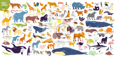 Naklejka Big vector set of different world wild animals, mammals, fish, reptiles and birds. Rare animals. Funny flat characters, good for banners, prints, patterns, infographics, children book illustration etc