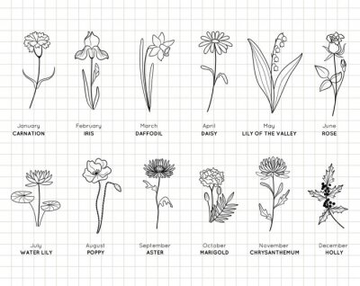 Naklejka Birth month flowers simple design bundle. Minimal summer spring decoration. Silhouette vector flat illustration. Cutting file. Suitable for cutting software. Cricut, Silhouette