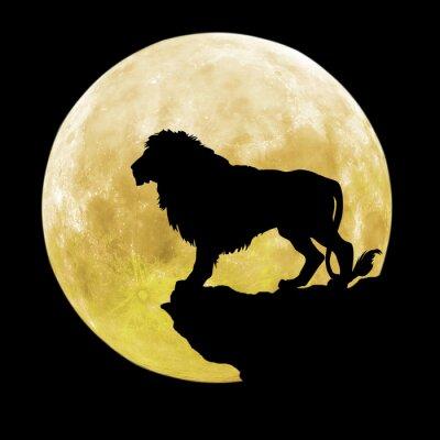 Naklejka Black Lion przed księżycem