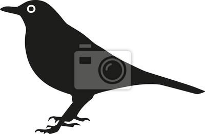 Naklejka Blackbird sylwetka z oka