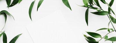 Naklejka Blank white card, green leaves on white background as botanical frame flatlay, wedding invitation and holiday branding, flat lay design concept