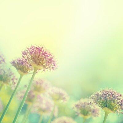 Naklejka Blooming Żarówki