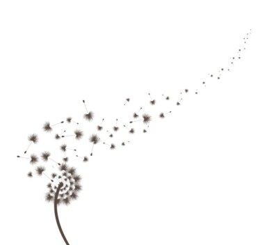 Naklejka Blow Dandelion
